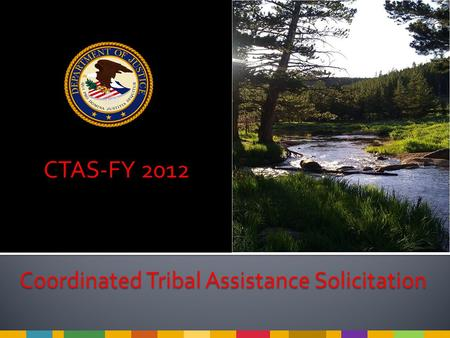 CTAS-FY 2012 Coordinated Tribal Assistance Solicitation.