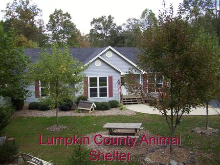 Lumpkin County Animal Shelter. Shelter Staff Full Time ManagerEddy Harris Admin / MaintenanceWayne Marshall Animal Care Tech Sharron Davis Part Time Animal.