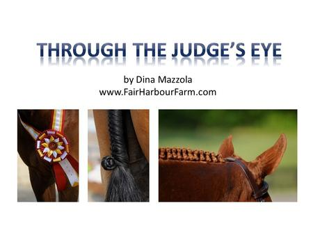 By Dina Mazzola www.FairHarbourFarm.com. So what is a show ring hunter? What's the difference between hunters and equitation? From the USEF Rule Book: