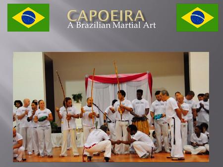 A Brazilian Martial Art.  Brazil is the largest country in South America  Brazil's landscape is very diverse  Amazon Rain Forest  Grasslands  Wetlands.