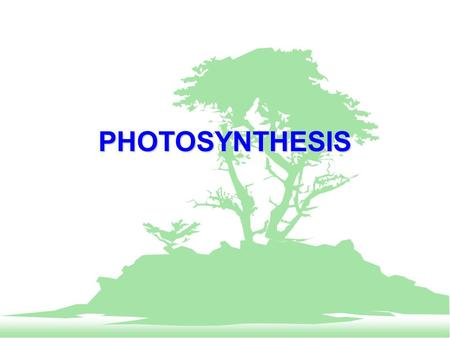 PHOTOSYNTHESIS. EngageEssential QuestionExplain Engage F List 10 things that you used today that depend upon photosynthesis. F Think hard and record.