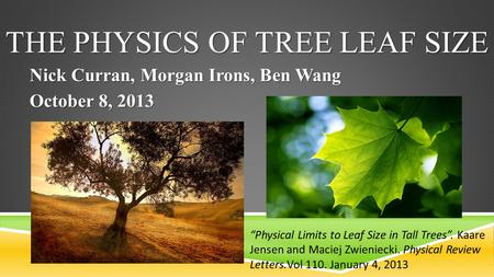 "THE PHYSICS OF TREE LEAF SIZE Nick Curran, Morgan Irons, Ben Wang October 8, 2013 ""Physical Limits to Leaf Size in Tall Trees"". Kaare Jensen and Maciej."