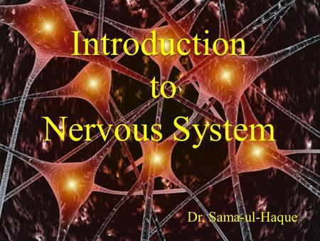 Introduction to Nervous System Dr. Sama-ul-Haque.