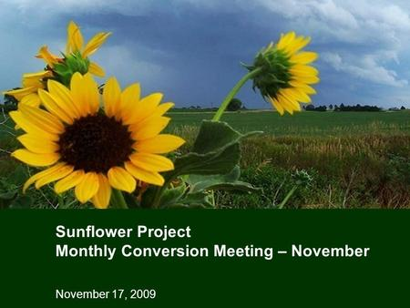 November 17, 2009 Sunflower Project Monthly Conversion Meeting – November.