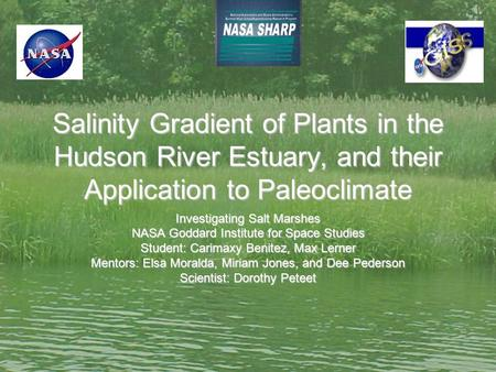 Salinity Gradient of Plants in the Hudson River Estuary, and their Application to Paleoclimate Investigating Salt Marshes NASA Goddard Institute for Space.