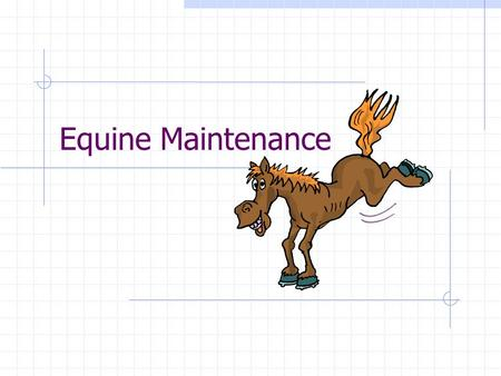 Equine Maintenance. Grooming Timing: Daily grooming may be required for show horses, boarding horses and horses used in a business. All horse should receive.