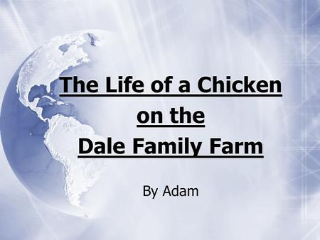 The Life of a Chicken on the Dale Family Farm By Adam The Life of a Chicken on the Dale Family Farm By Adam.