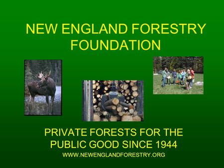 NEW ENGLAND FORESTRY FOUNDATION PRIVATE FORESTS FOR THE PUBLIC GOOD SINCE 1944 WWW.NEWENGLANDFORESTRY.ORG.