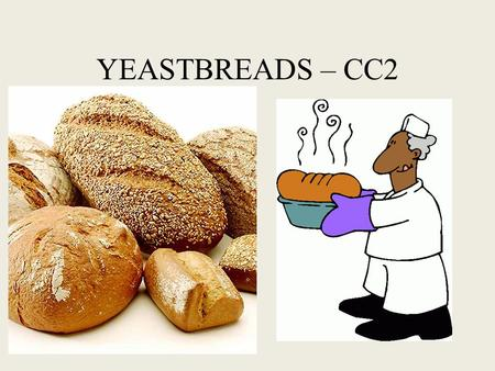 YEASTBREADS – CC2. Ingredients in yeast breads and their function Flour – used for structure When mixed with liquid flour develops GLUTEN – bread flour.