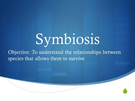  Symbiosis Objective: To understand the relationships between species that allows them to survive.
