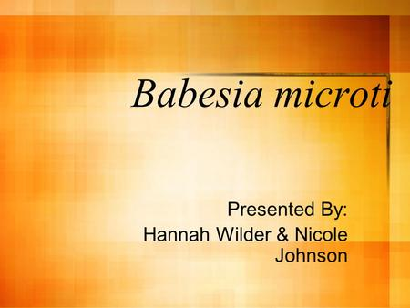 Babesia microti Presented By: Hannah Wilder & Nicole Johnson.