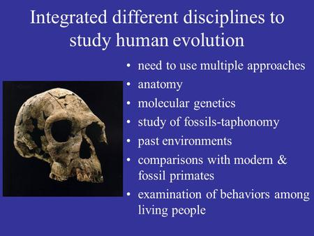 Integrated different disciplines to study human evolution need to use multiple approaches anatomy molecular genetics study of fossils-taphonomy past environments.