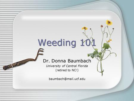 Weeding 101 Dr. Donna Baumbach University of Central Florida (retired to NC!)