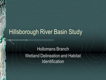 Hillsborough River Basin Study Hollomans Branch Wetland Delineation and Habitat Identification.
