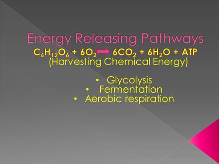 (Harvesting Chemical Energy) Glycolysis Fermentation Aerobic respiration.