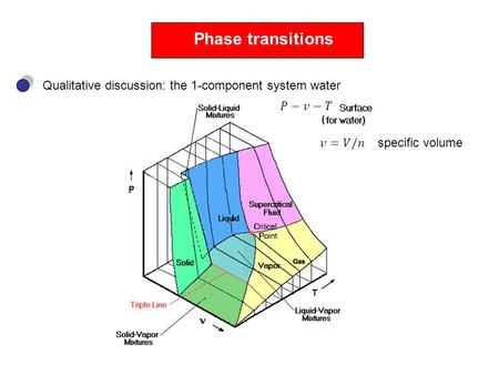 Phase transitions Qualitative discussion: the 1-component system water specific volume.