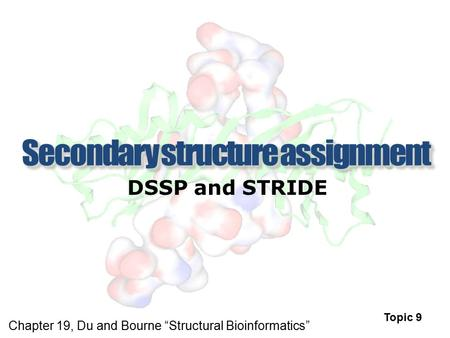Secondary structure assignment