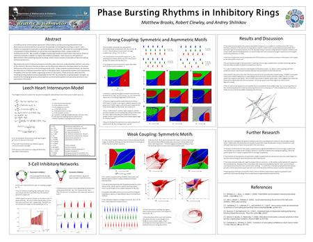 Phase Bursting Rhythms in Inhibitory Rings Matthew Brooks, Robert Clewley, and Andrey Shilnikov Abstract Leech Heart Interneuron Model 3-Cell Inhibitory.