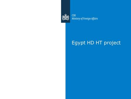 Egypt HD HT project. Next steps This week Fill in Lime survey (please) June 25, 2014: BD workshop; one day instead two June 26, 2014: One – on – one surgery.
