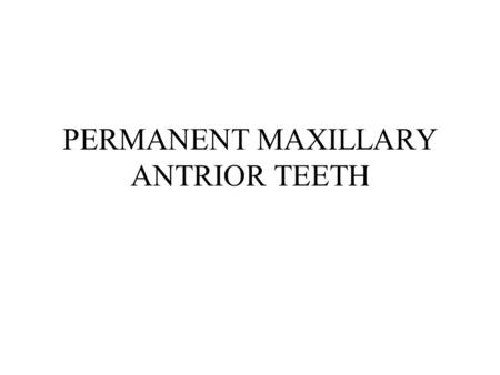 PERMANENT MAXILLARY ANTRIOR TEETH. MAXILLARY INCISORS Most prominent Widest MD Straight incisal edge Straight M Slightly curved D.