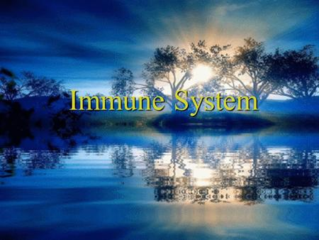 Immune System. 1 Constituents: Lymphocytes in blood vessels, lymphatic vessels and somewhere else, lymphatic vessels and somewhere else, lymphatic tissues.