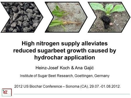 High nitrogen supply alleviates reduced sugarbeet growth caused by hydrochar application Heinz-Josef Koch & Ana Gajić Institute of Sugar Beet Research,