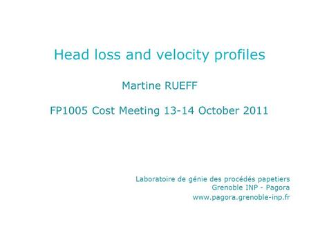 Head loss and velocity profiles Martine RUEFF FP1005 Cost Meeting 13-14 October 2011 Laboratoire de génie des procédés papetiers Grenoble INP - Pagora.