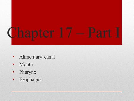 Chapter 17 – Part I Alimentary canal Mouth Pharynx Esophagus.