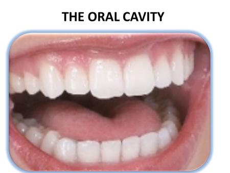 THE ORAL CAVITY Good overall health starts with the oral cavity…