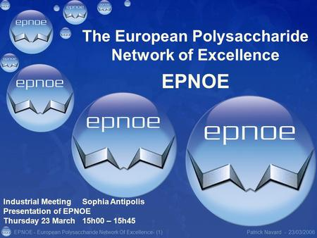 EPNOE - European Polysaccharide Network Of Excellence23/03/2006Patrick Navard -- (1) The European Polysaccharide Network of Excellence EPNOE Industrial.