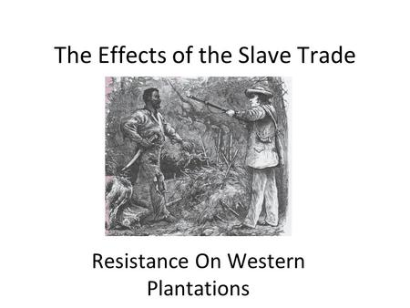 The Effects of the Slave Trade Resistance On Western Plantations.
