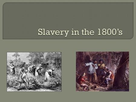  The majority of Southerners supported slavery, but some suggested that it was unconstitutional.  Supporters claimed that slavery was the only way to.