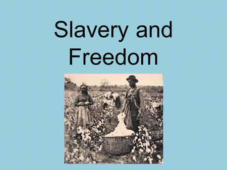 Slavery and Freedom. The Growth of Slavery The growth of slavery was due mostly to the growing importance of cotton as a cash crop.