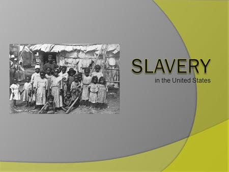 In the United States. When did slavery start? Slavery started in the United States in the early 1500's. The slaves were brought from Africa to the United.