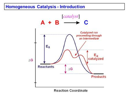 Homogeneous Catalysis - Introduction