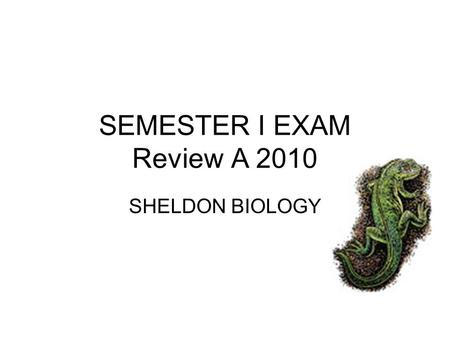SEMESTER I EXAM Review A 2010 SHELDON BIOLOGY. Match Parts of Scientific Method Problem Statement Hypothesis Experiment Conclusion If and then… Agree.