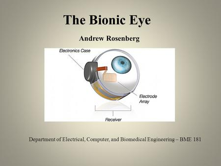 The Bionic Eye Department of Electrical, Computer, and Biomedical Engineering – BME 181 Andrew Rosenberg.