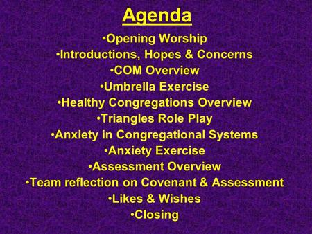 Agenda Opening Worship Introductions, Hopes & Concerns COM Overview Umbrella Exercise Healthy Congregations Overview Triangles Role Play Anxiety in Congregational.