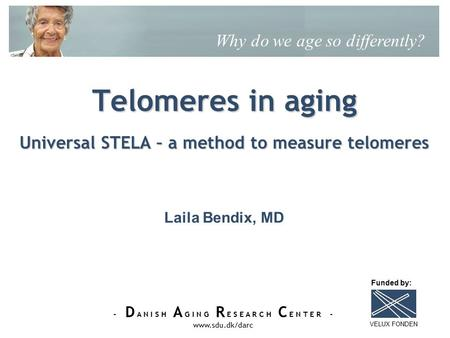 - D A N I S H A G I N G R E S E A R C H C E N T E R - www.sdu.dk/darc Telomeres in aging Universal STELA – a method to measure telomeres Why do we age.