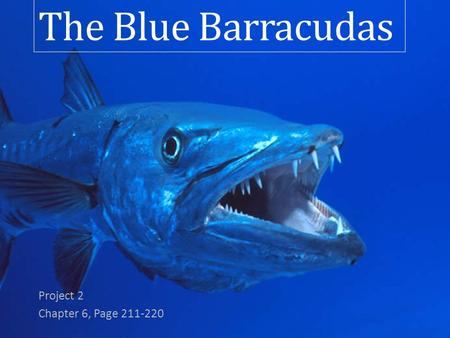 The Blue Barracudas Project 2 Chapter 6, Page 211-220.
