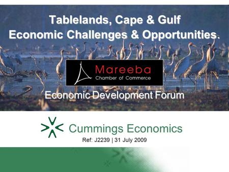 Tablelands, Cape & Gulf Economic Challenges & Opportunities. Economic Development Forum Cummings Economics Ref: J2239 | 31 July 2009.