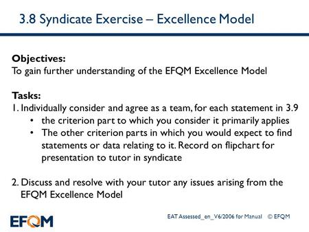 3.8 Syndicate Exercise – Excellence Model