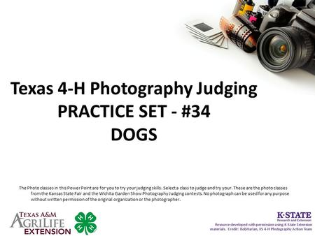 Texas 4-H Photography Judging PRACTICE SET - #34 DOGS The Photo classes in this Power Point are for you to try your judging skills. Select a class to judge.