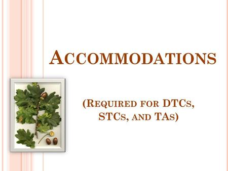A CCOMMODATIONS (R EQUIRED FOR DTC S, STC S, AND TA S )