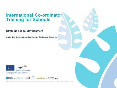 International Co-ordinator Training for Schools Strategic school development Calin Rus, Intercultural Institute of Timisoara, Romania.