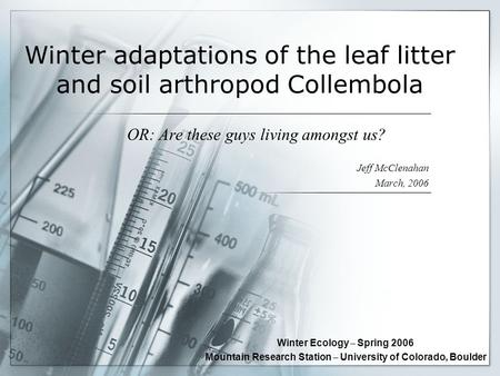 Winter adaptations of the leaf litter and soil arthropod Collembola OR: Are these guys living amongst us? Jeff McClenahan March, 2006 Winter Ecology –