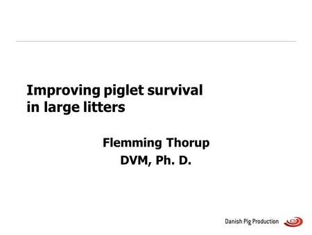 Improving piglet survival in large litters Flemming Thorup DVM, Ph. D.