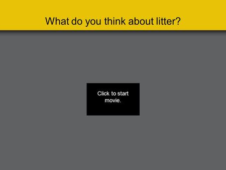 What do you think about litter? Click to start movie.