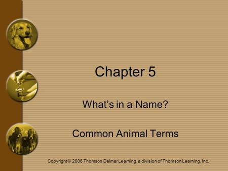 Copyright © 2006 Thomson Delmar Learning, a division of Thomson Learning, Inc. Chapter 5 What's in a Name? Common Animal Terms.