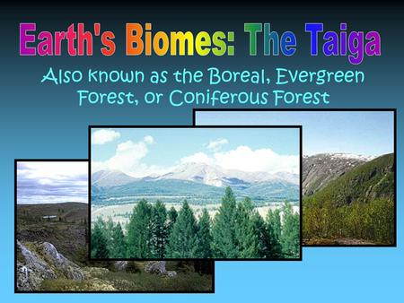 Also known as the Boreal, Evergreen Forest, or Coniferous Forest.